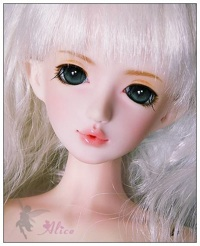 1alice_girl1